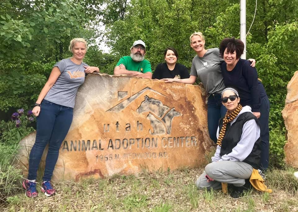 Volunteers at Utah Animal Adoption Center in Salt Lake City
